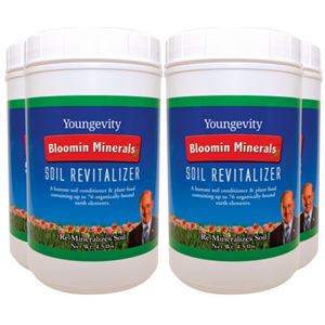 0003760_bloomin-mineral-soil-revitalizer-45-lbs-4-pack_300